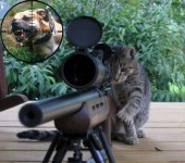 Den søde lille sniper killing