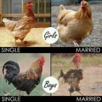 Ægteskab påvirker mænd og kvinder forskelligt
