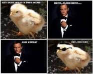 Kylling møder James Bond